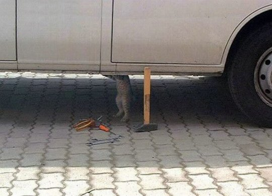 riparatore